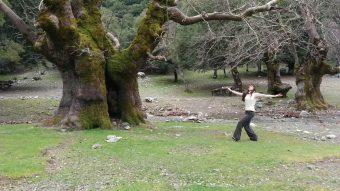 Minoan Nature Dance