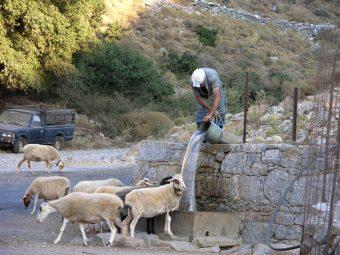 Traditional Crete