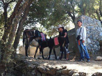 Traditional Crete – Lassithi
